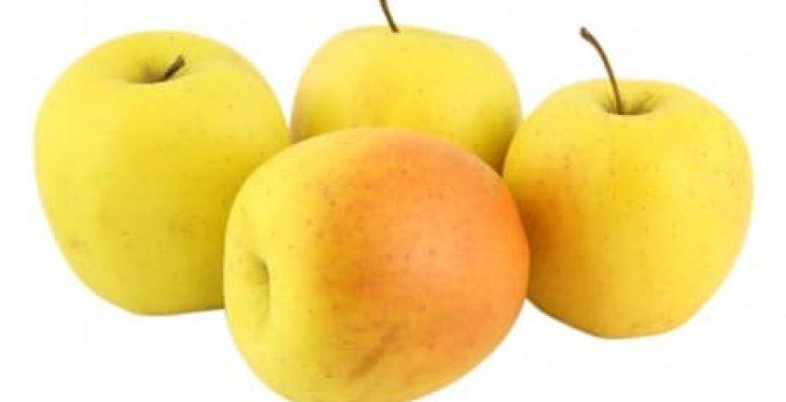 horizon-parapente-pomme-golden